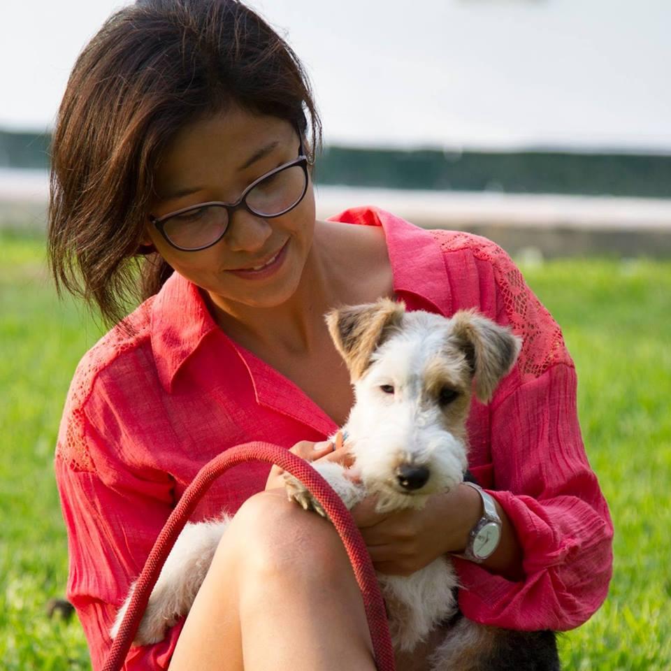 Efecto Games of Thrones: Cada vez más gente compra perros huskyes pero luego los abandona
