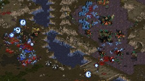 Gratis y legal: ya puedes descargar Starcraft Brood War