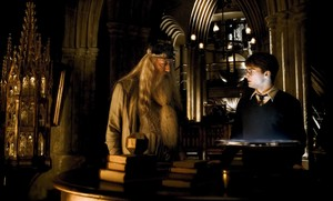 PARECIDOS Y DIFERENCIAS ENTRE HARRY POTTER Y FANTASTIC BEAST AND WHERE TO FIND THEM
