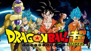 Dragon Ball Super manga 17 español
