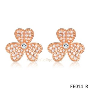 Facial area savior--Van Cleef & Arpels ear-rings
